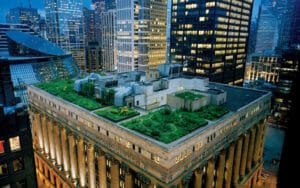 green rooftop with an abundance of plants growing in the middle of a city at night time